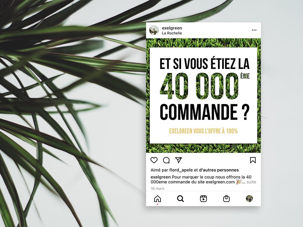 Post instagram d'exelgreen, avec en fond des plantes entouré par un fond blanc. Graphique et pep's.